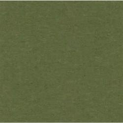 JOHN TARKETT VEN-R 757 2.5 ROLL VENETO GROWN GREEN * CUT CHARGE BILL SEPERATELY! * *CUT ROLLS NO CANCEL / NO RETURNS*